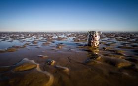 Картинка песок, море, макро, банка, ракушки
