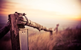 Обои поле, макро, природа, Забор, ограждение, бревна, боке