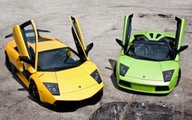 Картинка жёлтый, green, Roadster, Lamborghini, зелёный, родстер, ламборджини