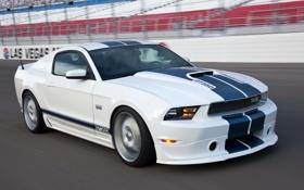 Картинка белый, скорость, трасса, Mustang, Ford, Shelby, мустанг