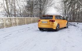 Картинка Audi, машина, обои, вид сзади, Gold Orange, RS3, Schwabenfolia
