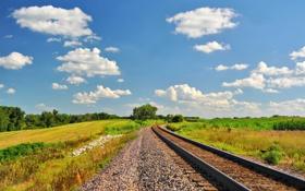 Обои зелень, рельсы, железная дорога