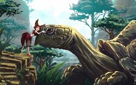 Картинка девушка, деревья, черепаха, арт, дружба, лисичка