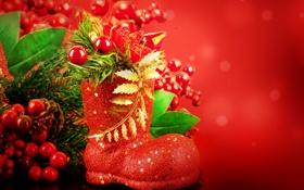 Обои сапожок, остролист, ягоды, падуб, праздники, ель, ветка