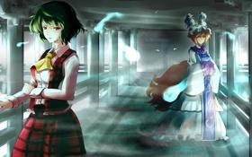 Обои девушки, арт, призрак, хвост, touhou, kazami yuuka, yakumo ran