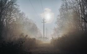 Картинка пейзаж, туман, утро, лэп