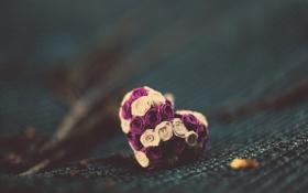 Картинка цветы, фон, настроение, сердце, форма, цветочки, сердечко