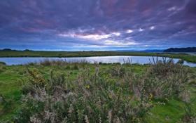 Обои небо, трава, облака, озеро, фото, горизонт