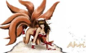 Обои взгляд, девушка, лицо, хвост, лисица, league of legends, ahri