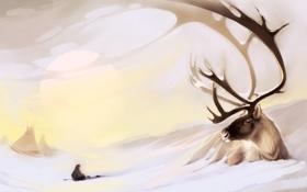Обои снег, олень, арт, рога, север