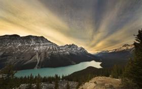 Картинка лес, природа, озеро, гора, lake, canada, national park