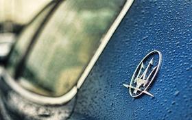 Обои logo, blue, maserati