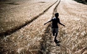 Обои ребёнок, поле, настроение