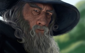 Картинка серый, шляпа, властелин колец, арт, маг, борода, Гендальф