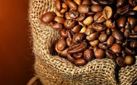 Обои кофе, зерна, мешковина, крупным планом