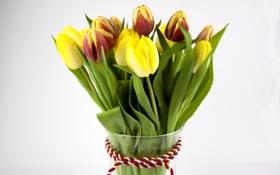 Обои тюльпаны, flowers, tulips, bouquet