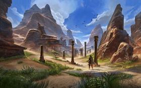 Обои птицы, скалы, человек, воин, колонны, руины, The Elder Scrolls Online