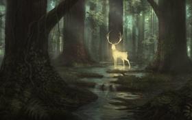 Обои лес, животное, олень, арт, рога