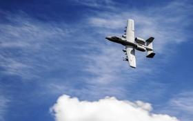 Картинка небо, штурмовик, A-10, Thunderbolt II, одноместный