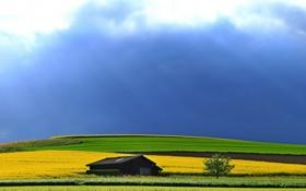 Картинка пейзаж, поле, дом, небо, лето