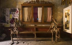 Обои скелеты, лавка, рендеринг