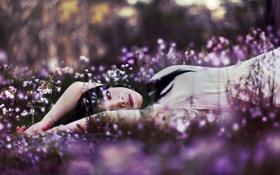 Картинка девушка, цветы, природа, настроение