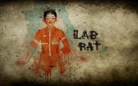 Обои комикс, Portal 2, Портал 2, Челл, Chell, лабораторная крыса, lab Rat