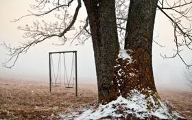 Обои иней, снег, качели, дерево, ветви, площадка, начало зимы