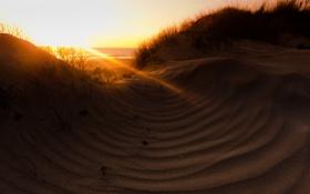 Картинка море, свет, пейзаж, природа, утро, дюны