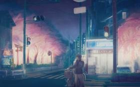 Картинка деревья, ночь, велосипед, улица, здания, куртка, светофор