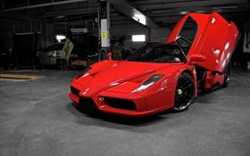 Обои открытая дверь, энзо, Ferrari, передняя часть, бокс, феррари, red