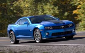 Обои Авто, Синий, Chevrolet, Машина, Camaro, Фары, Купэ