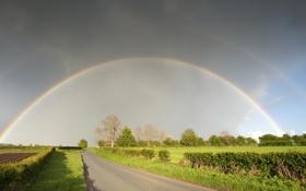 Картинка дорога, трава, деревья, радуга