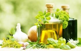 Обои зелень, чеснок, оливковое масло, olive oil, garlic, fresh herbs