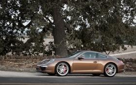 Картинка Порше, Porsche, авто, 911, машина, дорога, дерево.