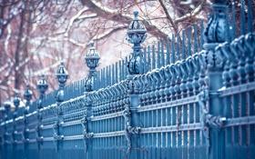 Обои city, trees, blue, fence, cold, urban, Leipzig