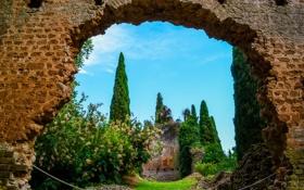 Обои деревья, стена, Италия, развалины, арка, кусты, сады