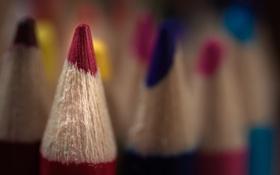 Картинка макро, фон, карандаш