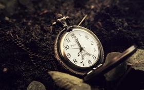 Обои листья, земля, Париж, часы, Эйфелева башня, циферблат, цепочка