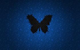 Картинка black, blue, butterfly
