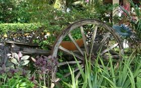 Обои оформление, декор, ландшафт, телега, лето, сад