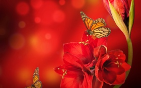 Картинка цветок, бабочки, красный, блики, амарилис