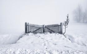 Обои зима, снег, туман, ворота
