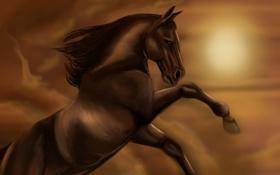Обои взгляд, животное, лошадь, грива, живопись, копыта
