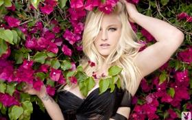 Картинка red, bra, boobs, breast, flowers, tits, blonde
