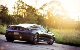 Картинка трава, Scuderia, black, Ferrari, F430, блик, чёрная