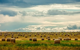 Картинка небо, трава, облака, поля, горизонт, сено, сельская местность