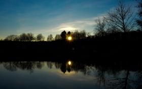 Картинка деревья, закат, озеро, вечер, силуэты