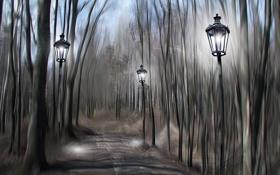 Картинка парк, фонари, дорожка
