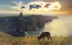 Картинка Шотландия, арт, Scotland, Photo Manipulated